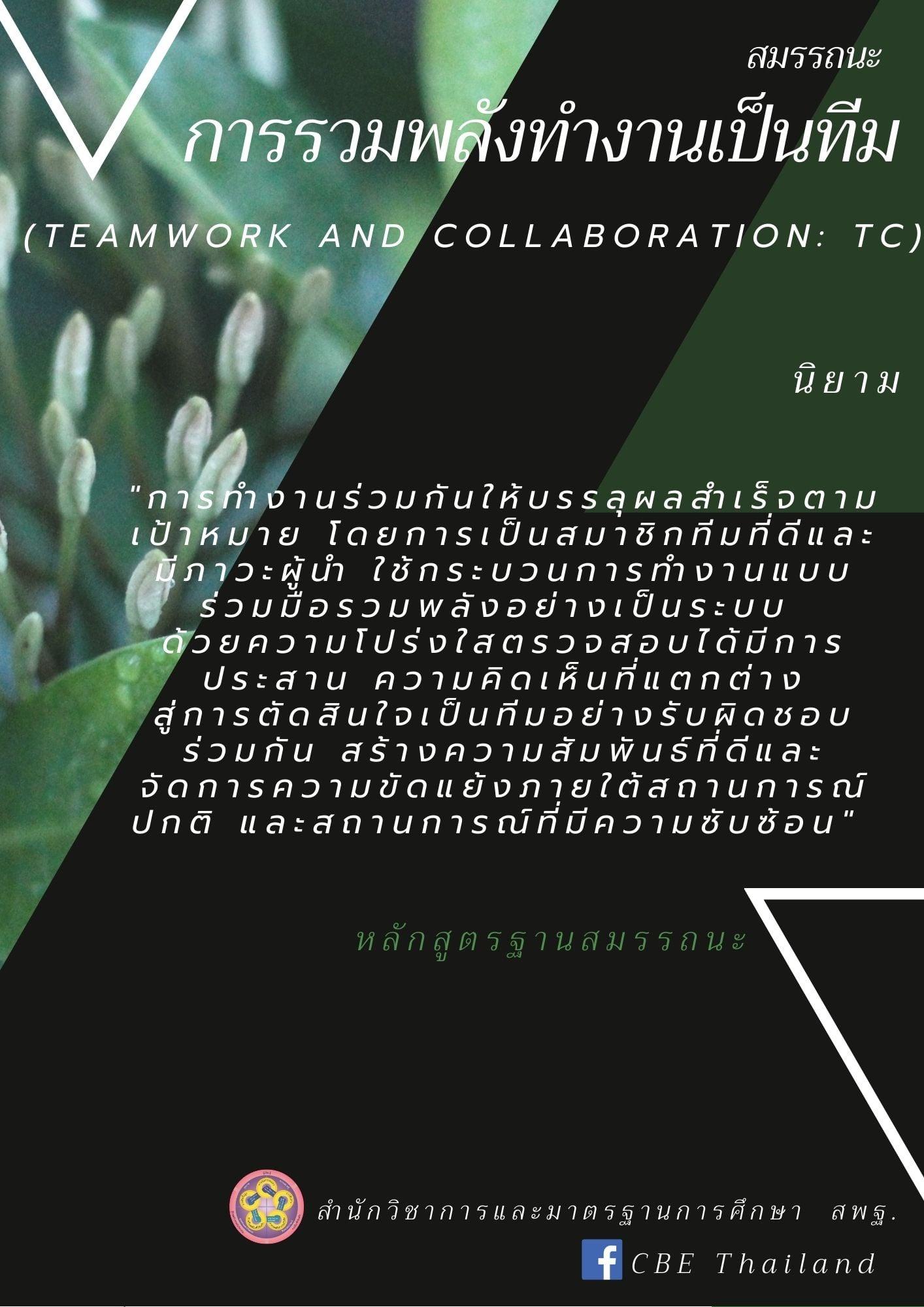 สมรรถนะการรวมพลังทำงานเป็นทีม (TC)
