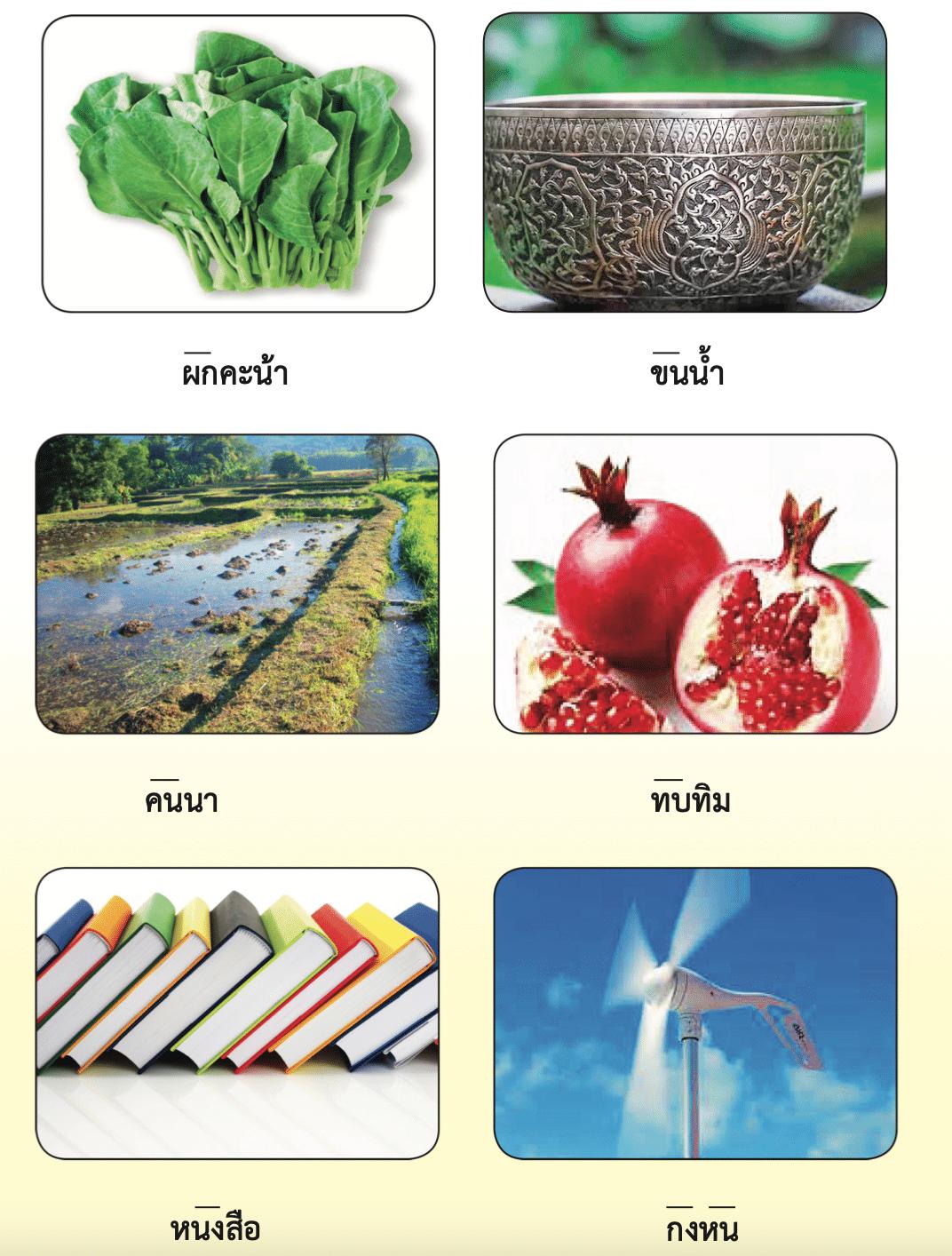 ดาวน์โหลดไฟล์ คู่มือการสอนอ่านคำ ที่มีปัญหาในการอ่านออกเสียง ชั้น ป.1-3