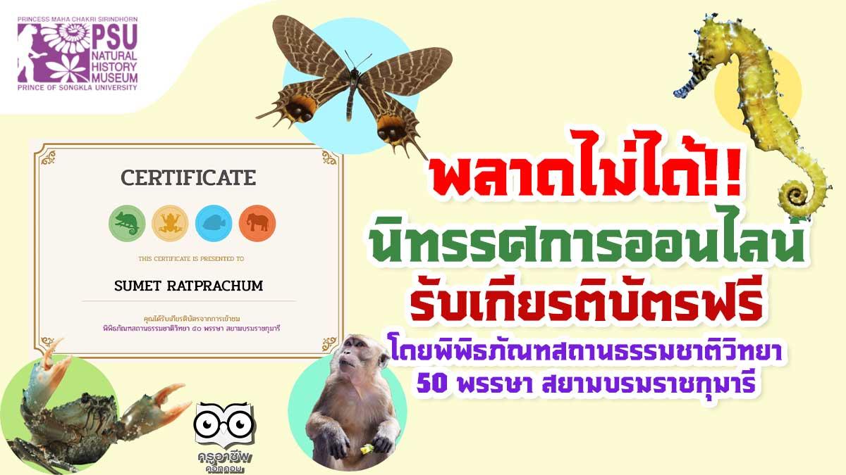 พลาดไม่ได้!! นิทรรศการออนไลน์ ความรู้เกี่ยวกับระบบนิเวศและสิ่งมีชีวิตในภาคใต้ของไทย รับเกียรติบัตรฟรี โดยพิพิธภัณฑสถานธรรมชาติวิทยา ๕๐ พรรษา สยามบรมราชกุมารี
